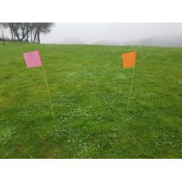 Piquets drapeaux de signalisation biodégradables (lot de 50)